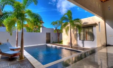 mini-piscine-palmiers